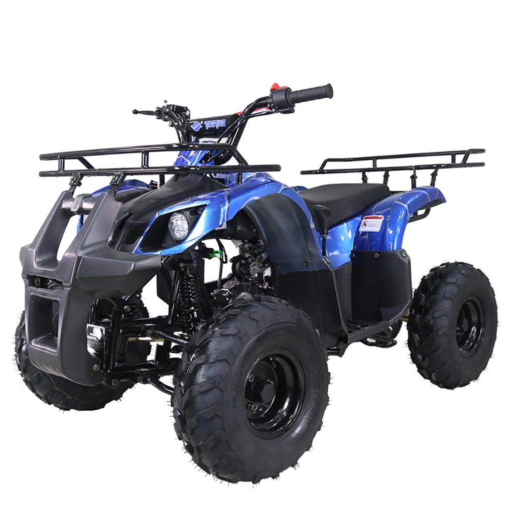 TAO MOTOR 125 D125 KIDS ATV